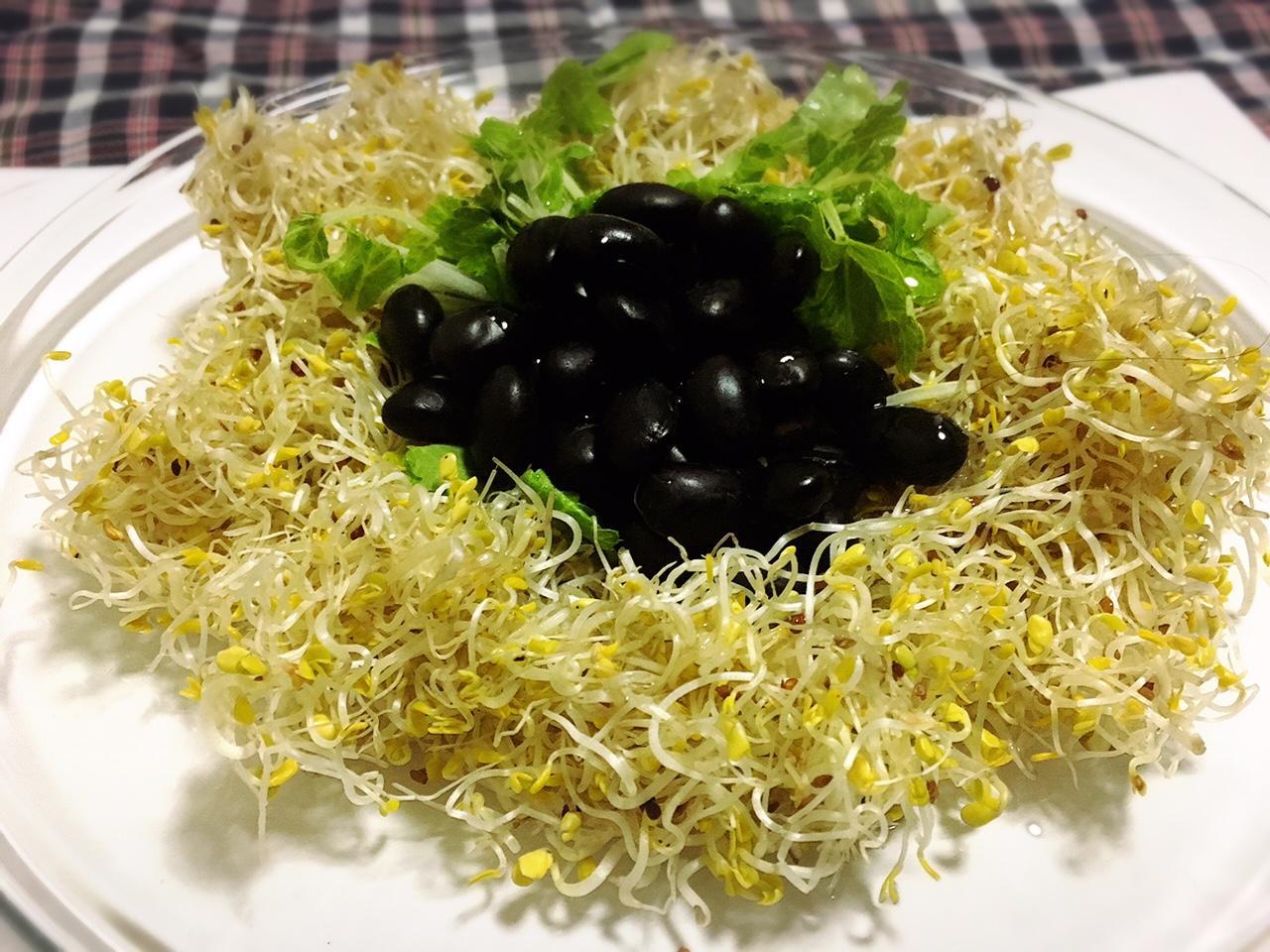 Japanese Vegetable Series : Broccoli and Alfa
