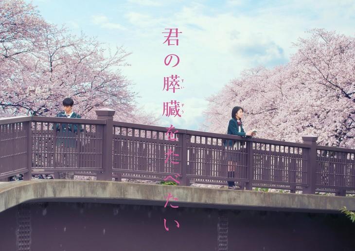 """Kimi no Suizō wo Tabetai"" Trailer Released"
